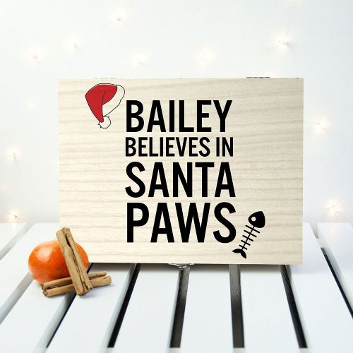 Pets Santa Paws Christmas Eve Box